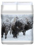 Buffalo In The Blowing Snow Duvet Cover