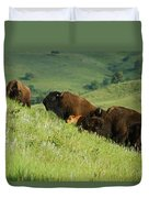 Buffalo On Hillside Duvet Cover