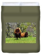 Buffalo Posing Duvet Cover