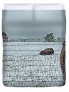 Buffalos In The Snow Duvet Cover by Barry C Donovan