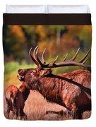 Bugling Elk In Autumn Duvet Cover