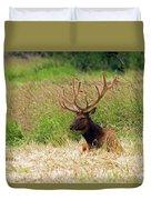 Bull Elk At Rest Duvet Cover
