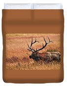 Bull Elk In A Field Duvet Cover