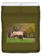 Bull Elk In Rutting Season Duvet Cover