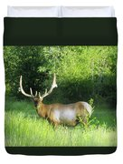 Bull Elk In Velvet  Duvet Cover by Jeff Swan