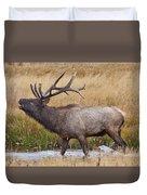 Bull Elk In Yellowstone Duvet Cover by Wesley Aston