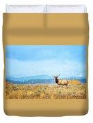 Bull Elk Meadow Duvet Cover
