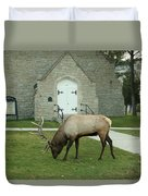 Bull Elk On The Church Lawn Duvet Cover