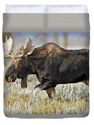 Bull Moose Crossing The Sage  Duvet Cover