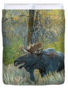 Bull Moose In The Evening Duvet Cover