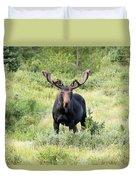 Bull Moose Stands Guard Duvet Cover