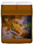 Bullfrog In Water Duvet Cover