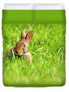 Bunny In Field  Duvet Cover