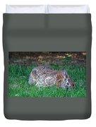 Bunny In The Backyard Duvet Cover