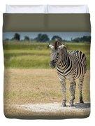 Burchell's Zebra On Grassy Plain Facing Camera Duvet Cover