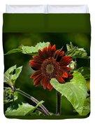 Burgundy Red Sunflower Duvet Cover
