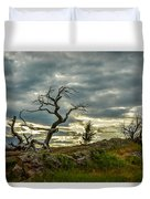 Burmis Tree And Wind Swept Pines Duvet Cover