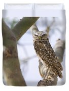 Burrowing Owl Perched On A Branch  Duvet Cover