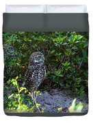 Burrowing Owls At Guard Duvet Cover