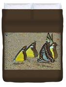 Butterflies Puddling Duvet Cover