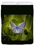 Butterfly 11 Duvet Cover