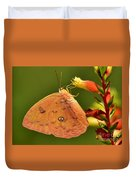 Butterfly Delight Duvet Cover