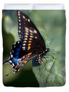 Butterfly Laying Eggs Duvet Cover