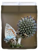 butterfly on a Echinops adenocaulon Duvet Cover