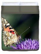butterfly on a Silybum marianum I Duvet Cover