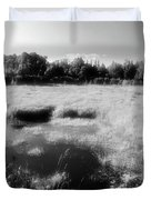 By The Road In Summer Two  Duvet Cover