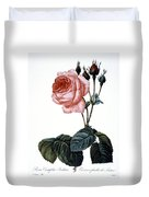 Cabbage Rose Duvet Cover