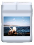Cabo San Lucas Pelican Duvet Cover