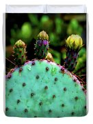 Cacti And Friends Duvet Cover