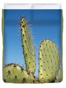 Cactus Against Blue Sky Duvet Cover