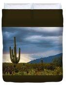 Cactus Sunset Saguaro National Park Arizona Duvet Cover