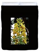 Caesalpinia Cacalaco In Huntington Desert  Gardens In San Marino-california  Duvet Cover