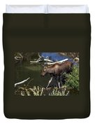 Calf Moose Duvet Cover