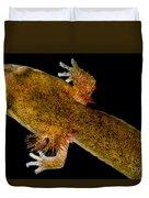 California Giant Salamander Larva Duvet Cover