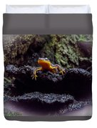 California Newt 2 Duvet Cover