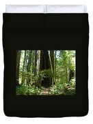 California Redwood Trees Forest Art Duvet Cover