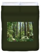 California Redwood Trees Forest Art Prints Duvet Cover by Baslee Troutman