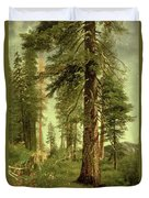 California Redwoods Duvet Cover