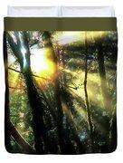 California Redwoods Duvet Cover by Richard Ricci