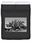 California Roadside Tree - Black And White Duvet Cover