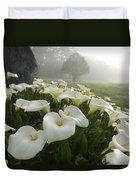Calla Lilies Zantedeschia Aethiopica Duvet Cover