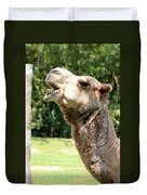 Camel Chewing Duvet Cover