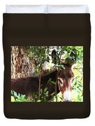 Camera Shy Donkey Duvet Cover