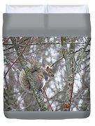 Camera Shy Grey Squirrel Duvet Cover