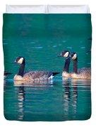 Canada Geese 2 Duvet Cover