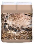 Canada Goose Maternity Ward Duvet Cover